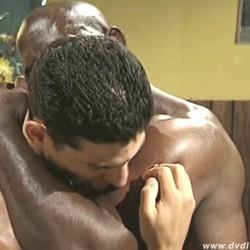 gay romero sexfilme zum downloaden